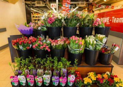 Blumen bei REWE in Neuaubing